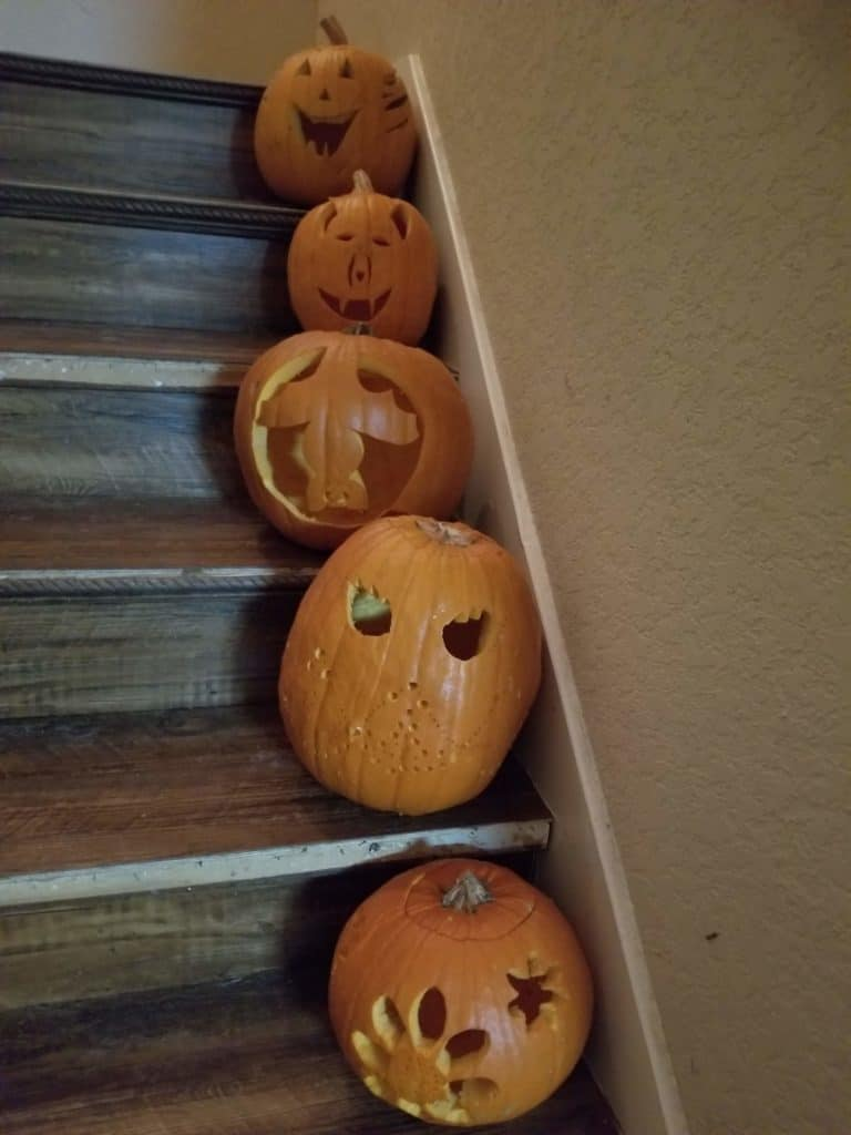 carved pumpkins from pumpkin patch